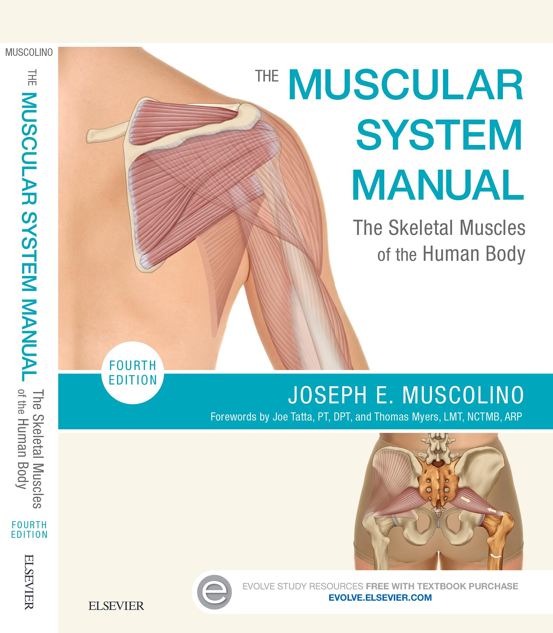 System pdf manual muscular the