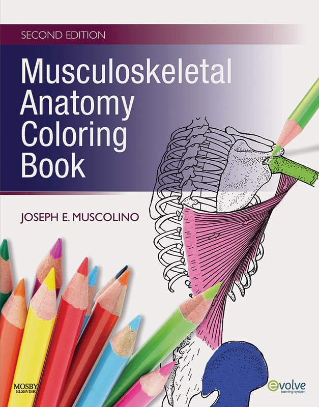 Musculoskeletal anatomy coloring book 3rd edition learn Anatomy coloring book 6th edition