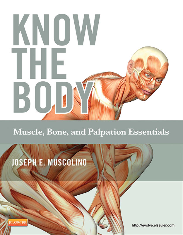 Know the Body - Learn Muscles