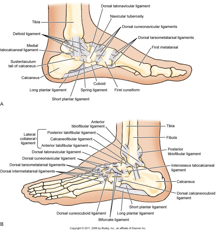 What is an inversion ankle sprain and what are its causes?