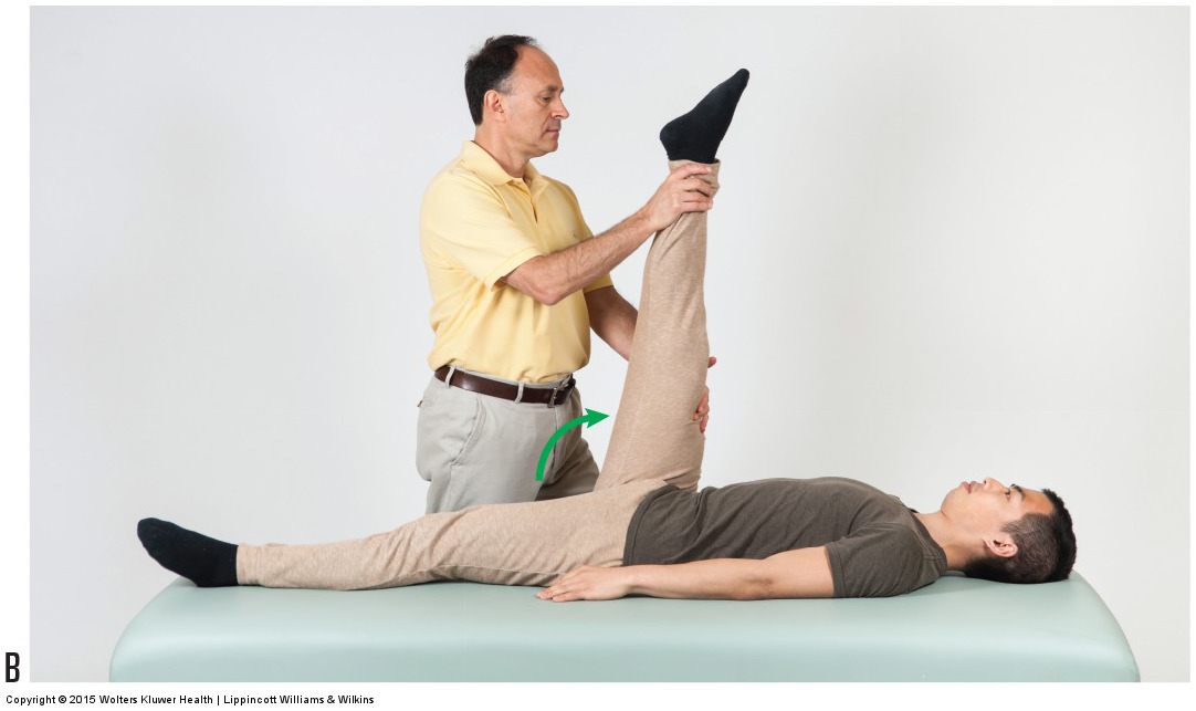 straight leg raise orthopedic assessment test for a client with low back sprain / strain