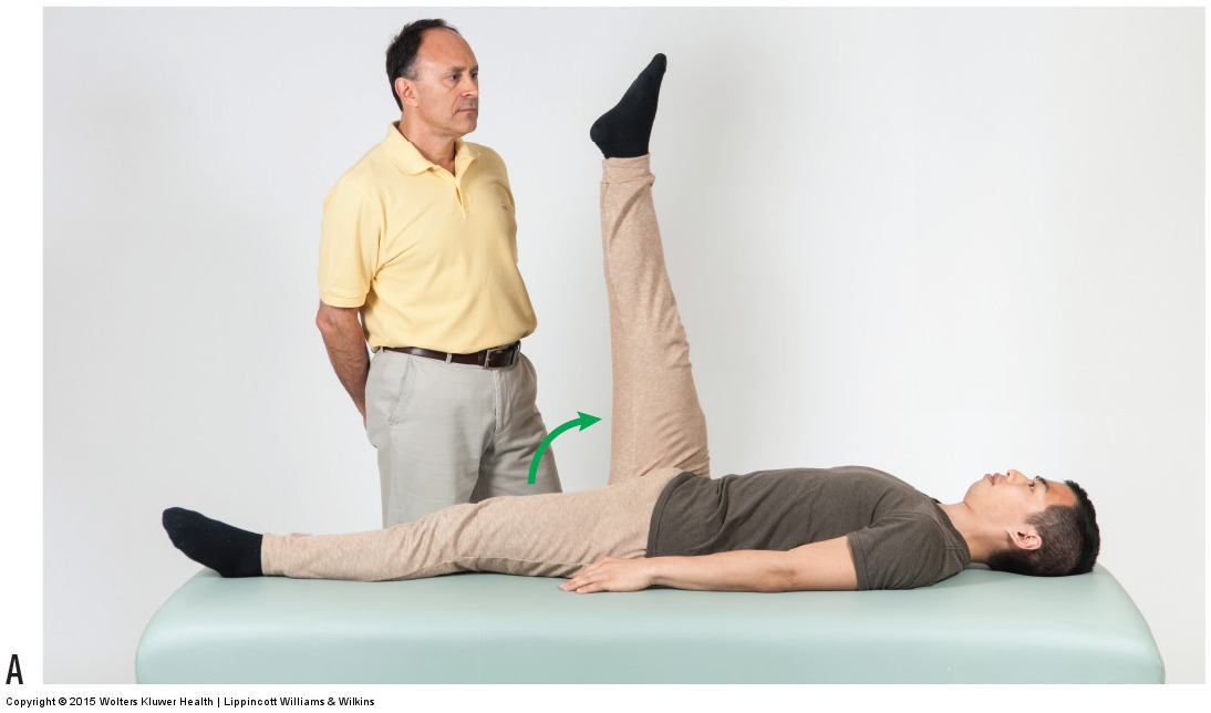 Straight leg raise orthopedic assessment test can be used to assess low back muscle spasming