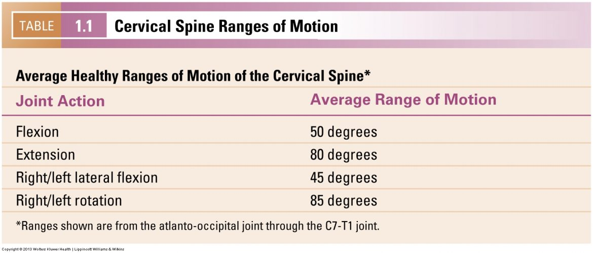Cervical spine ranges of motion.
