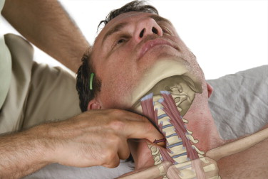 palpation of the longus muscles of the anterior neck can be done carefully but these muscles are important to assess