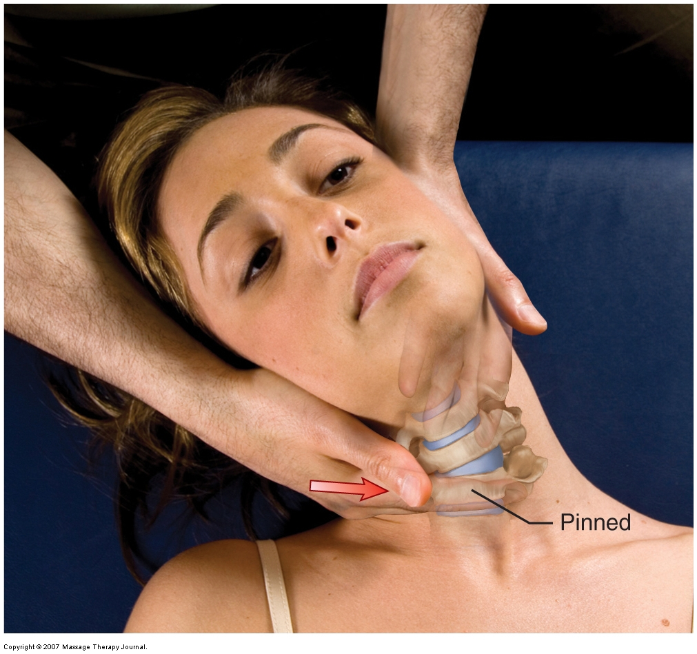physical examination motion palpation (joint play) assessment of the cervical spine