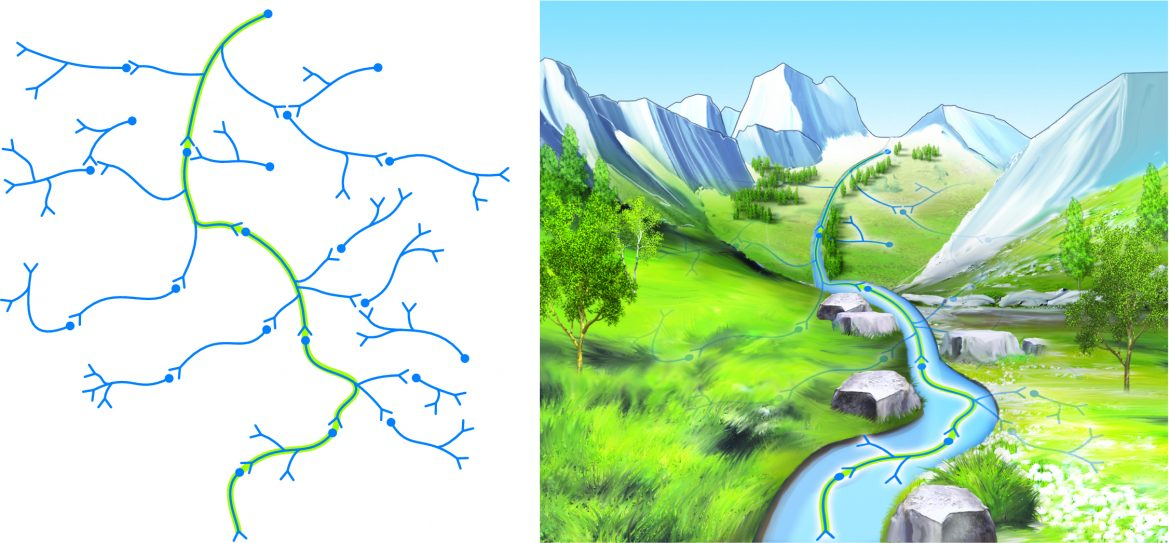 neural plasticity learning patterns can be likened to water etching itself into the earth