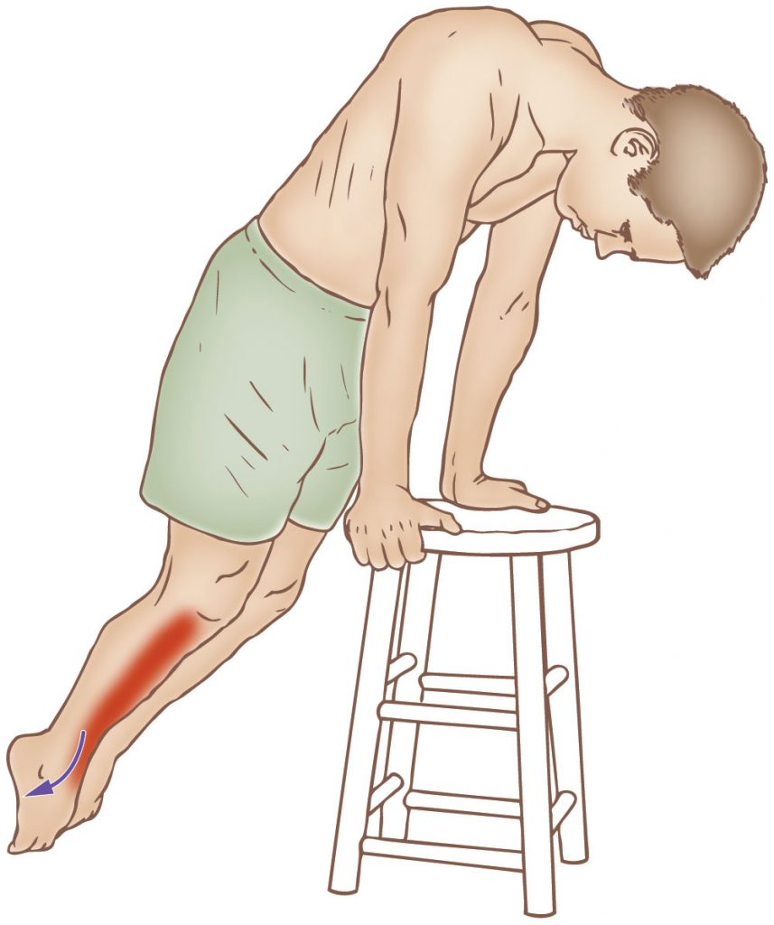 Tibialis anterior - Stretching - Learn Muscles