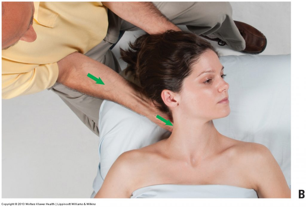 Figure 7B. Permission Joseph E. Muscolino. Advanced Treatment Techniques for the Manual Therapist: Neck (2015).