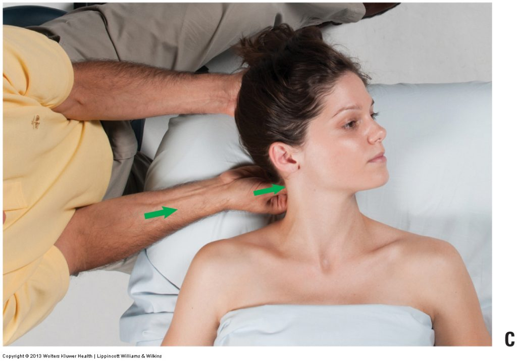 Figure 7C. Permission Joseph E. Muscolino. Advanced Treatment Techniques for the Manual Therapist: Neck (2015).