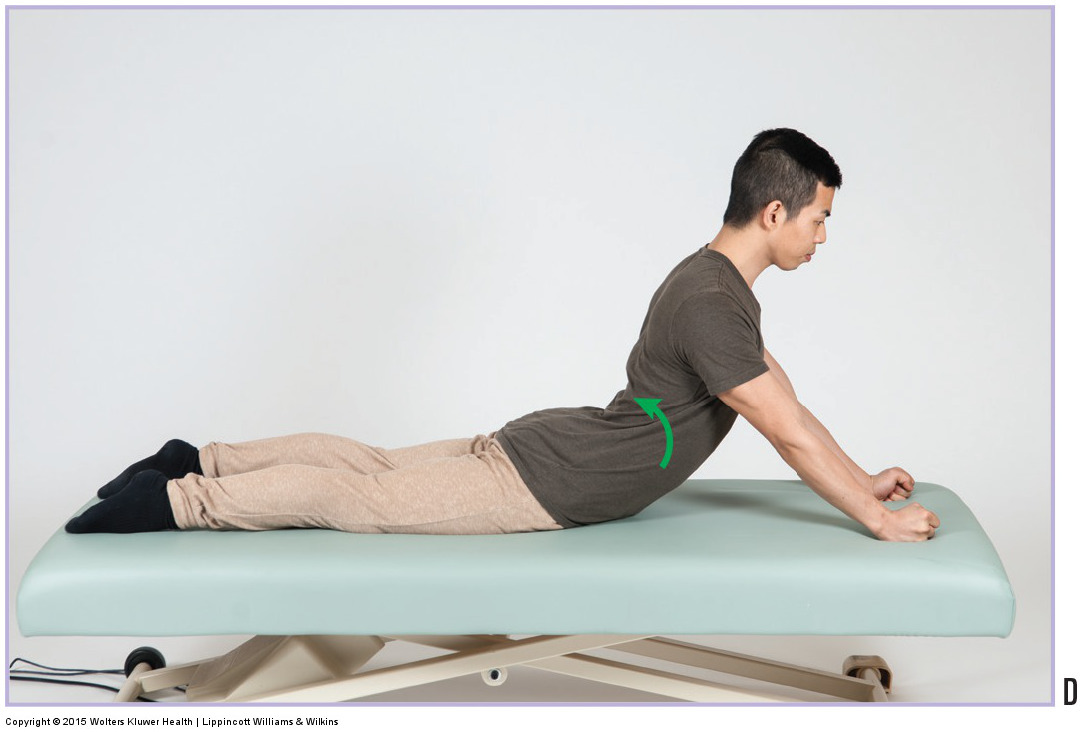 Back Extension Exercise. Permission Joseph E. Muscolino. Orthopedic Manual Therapy - A Clinical Orthopedic Approach (2015)