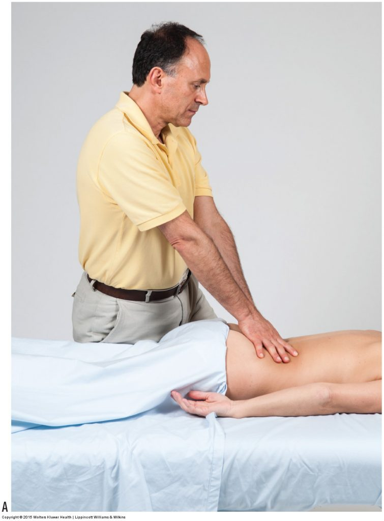 Deep Strokes. Permission Joseph E. Muscolino. Manual Therapy for the Low Back and Pelvis - A Clinical Orthopedic Approach (2013).