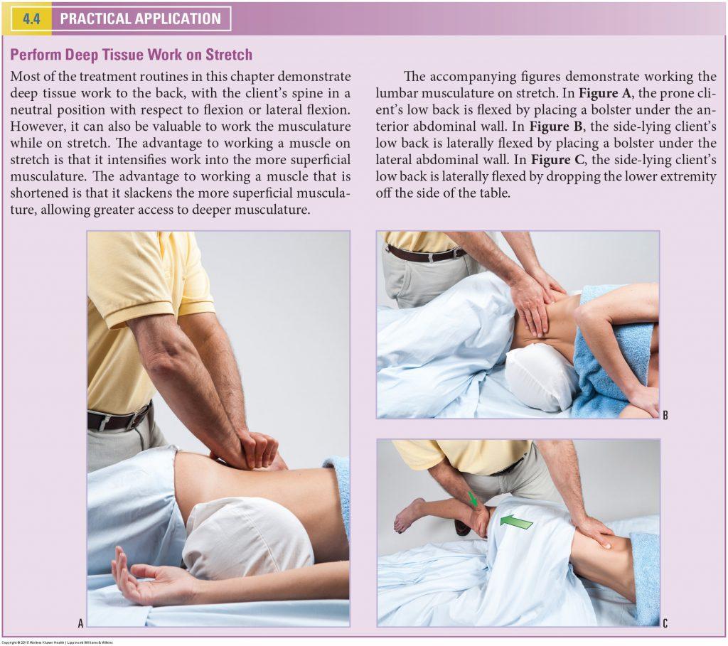 Body Mechanics. Permission Joseph E. Muscolino. www.learnmuscles.com