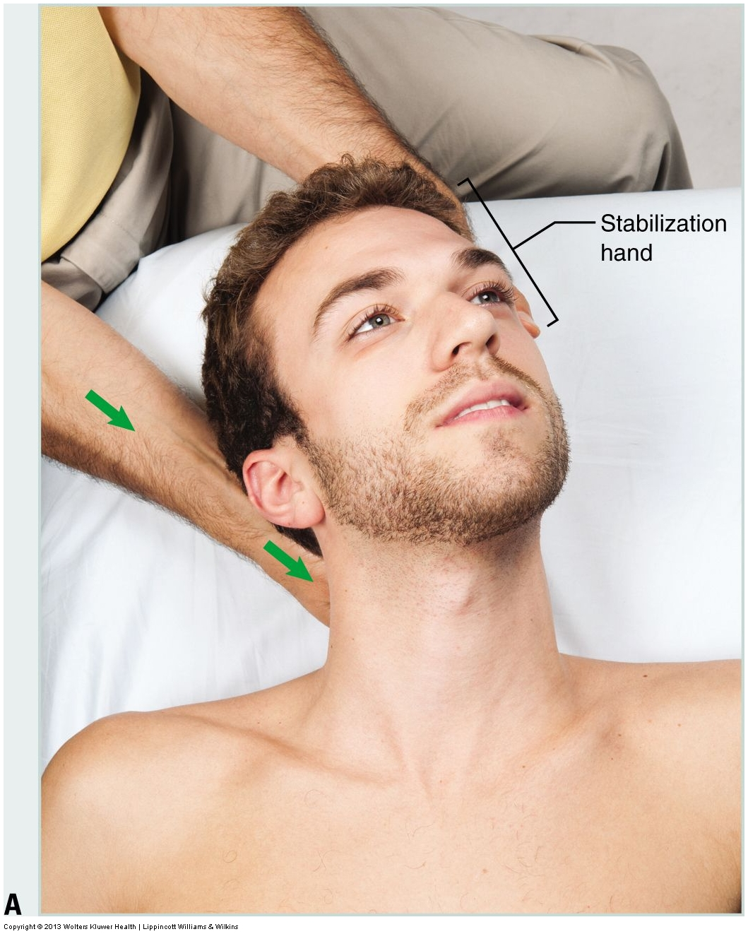 Permission Joseph E. Muscolino. Advanced Treatment Techniques for the Manual Therapist: Neck (2013).