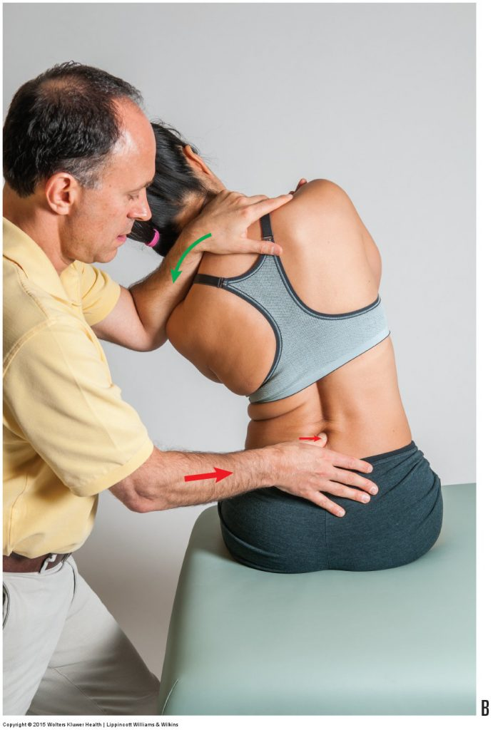 Permission Joseph E. Muscolino. Manual Therapy for the Low Back and Pelvis - An Orthopedic Approach (2015).
