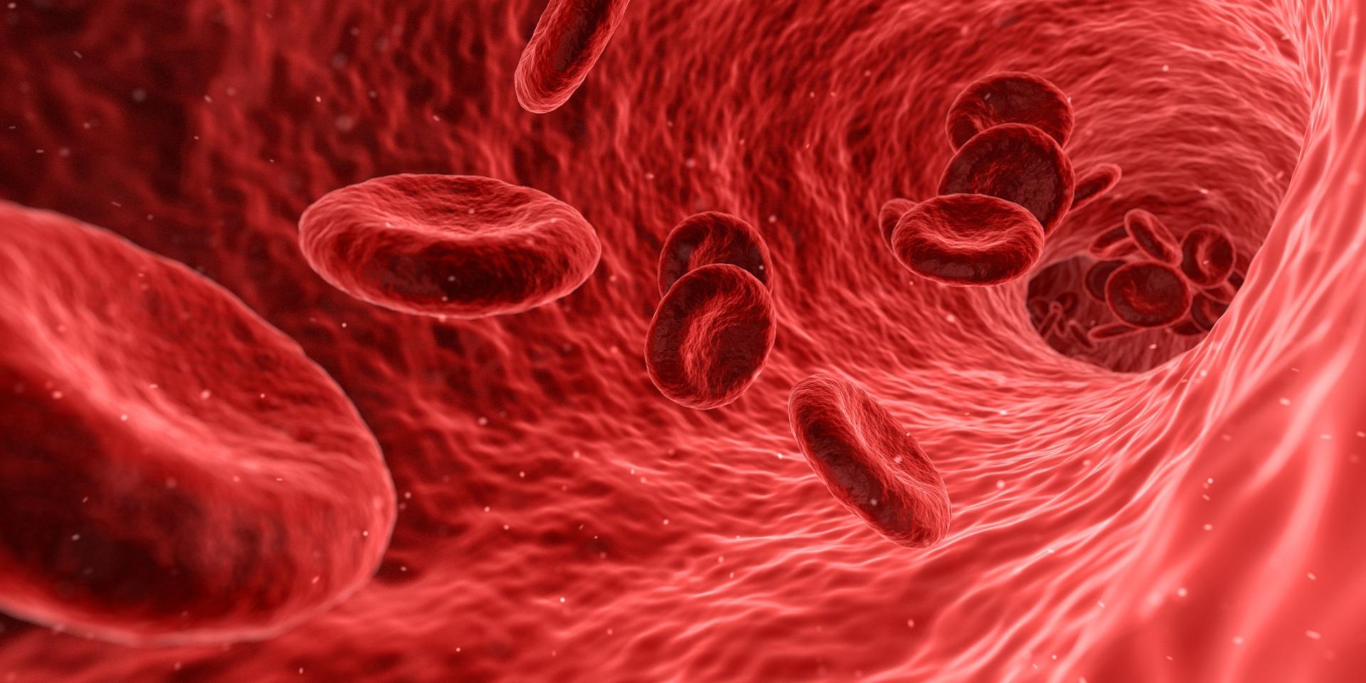 Can Massage Increase Blood Circulation?