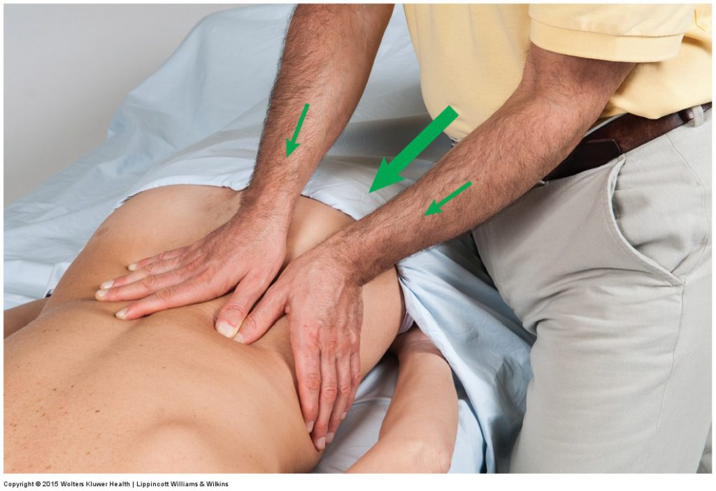 Permission Joseph E. Muscolino. Manual Therapy for the Low Back and Pelvis - A Clinical Orthopedic Approach (2015).
